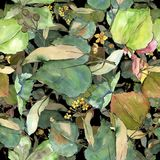 Groene bladerenlinde Botanisch de tuin bloemengebladerte van de bladinstallatie Naadloos patroon als achtergrond vector illustratie