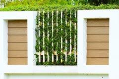 Groene bladerenvarens op de muur, Oude muren met aard Textuur of achtergrond voor presentatiedocument Royalty-vrije Stock Fotografie