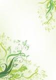 Groene bloem stock illustratie