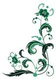 Groene bloem Royalty-vrije Stock Foto's