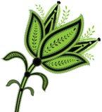 Groene bloem met fijne details Stock Afbeeldingen