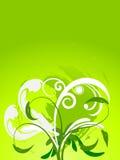 Groene bloemenachtergrond Royalty-vrije Stock Afbeeldingen