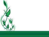 Groene bloemenachtergrond stock illustratie