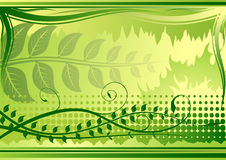 Groene bloemenachtergrond royalty-vrije illustratie