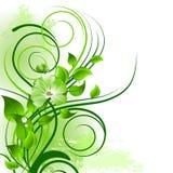 Groene bloemenachtergrond Royalty-vrije Stock Afbeelding
