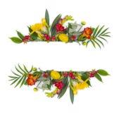 Groene bloemenbanner met veelkleurige die bloemen op witte achtergrond worden geïsoleerd Stock Foto