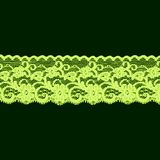 Groene bloemenkantband Stock Fotografie
