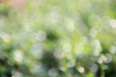 Groene bokehachtergrond, groene bokeh, groene bokehsamenvatting Stock Foto