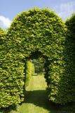 Groene boog in tuin stock fotografie