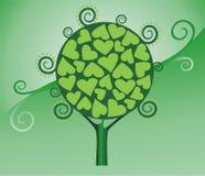 Groene boom Royalty-vrije Stock Afbeelding