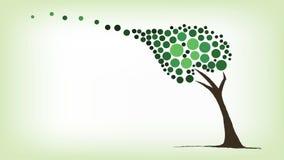 Groene boom die in de wind blazen Stock Afbeeldingen
