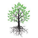 Groene boom en wortels vector illustratie