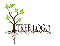 Groene boom met wortels stock illustratie