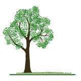 Groene boomachtergrond stock illustratie