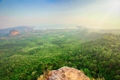 Groene bos en rotsen stock afbeeldingen