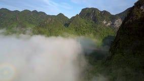 Groene bosbouwbergen boven mist tegen blauwe hemel stock footage