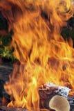 Groene brand Stock Afbeelding