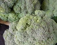 Groene broccoli voor gezondheid en vitaliteit en voeding royalty-vrije stock foto's