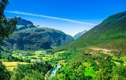Groene calleylandschap en bergkreek in Noorwegen stock foto