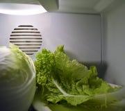 Groene Chinese salade in koelkast stock foto's
