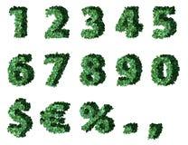 Groene cijfers Royalty-vrije Stock Foto