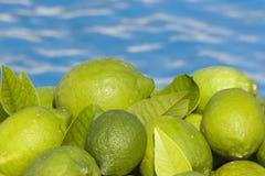 Groene Citroenen Stock Foto's