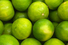 Groene citroenen Stock Foto