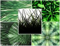 Groene collage royalty-vrije illustratie