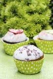 Groene cupcakes Royalty-vrije Stock Foto