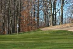 Groene de Cursus van het golf Stock Foto