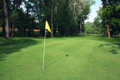 Groene de cursus van het golf Royalty-vrije Stock Foto's