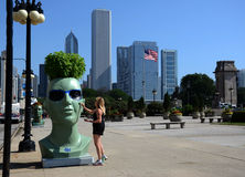 Groene de Ideeënplanter van de Abtinstallatie, Chicago van de binnenstad Royalty-vrije Stock Foto's