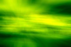 Groene de lenteachtergrond Royalty-vrije Stock Foto's