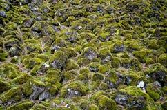 Groene deken stock fotografie