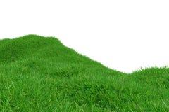 Groene die grasheuvel op witte achtergrond wordt geïsoleerd Natuurlijke achtergrond Openlucht abstracte achtergrond het 3d terugg Royalty-vrije Stock Foto's