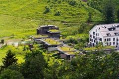 Groene die het leven zodedaken met vegetatie, luchtmening, flats worden behandeld stock foto's