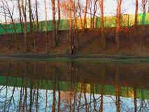 Groene die omheining en bomen in het meer wordt weerspiegeld Stock Fotografie