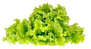 Groene die salade op een wit wordt geïsoleerd stock afbeelding