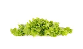 Groene die salade op een wit wordt geïsoleerd Stock Foto
