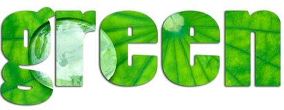 Groene die tekst met groen blad wordt gevuld Stock Foto