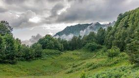 Groene die weide omhoog hoog in de bergen, door bos met hoge bergpiek worden omringd op de horizon stock afbeelding