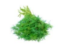 Groene dille Stock Foto