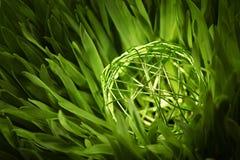 Groene draadorb in weide Stock Afbeeldingen