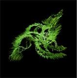 groene draak Royalty-vrije Stock Foto's