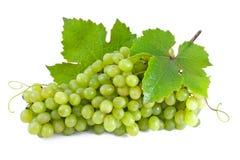 Groene druiven. stock foto's
