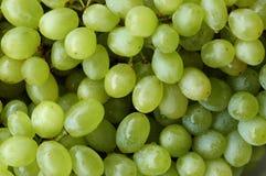 Groene druivenachtergrond Royalty-vrije Stock Fotografie