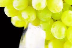 Groene druivenclose-up Royalty-vrije Stock Fotografie