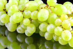 Groene druivenclose-up Stock Fotografie