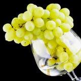 Groene druivenclose-up Royalty-vrije Stock Foto