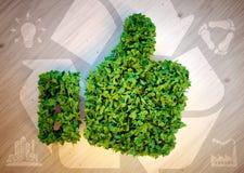 Groene duimen omhoog met ecopictogrammen Stock Foto